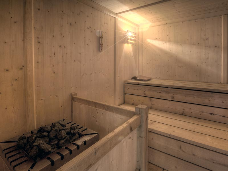 The world of saunas